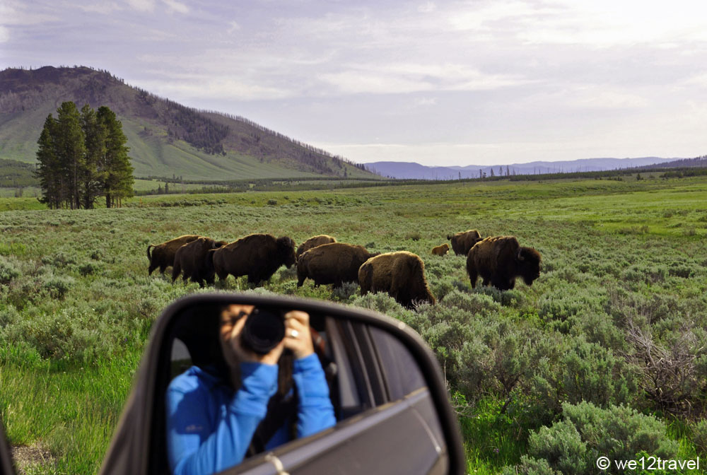 how to plan for yellowstone