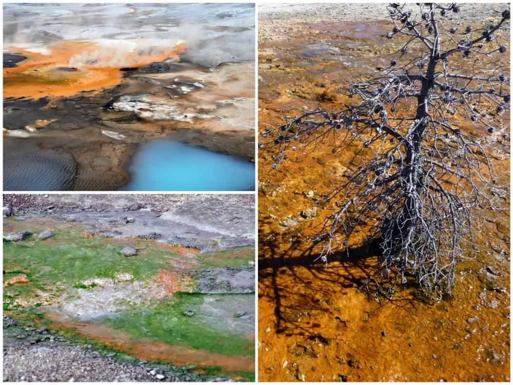 norris geyser basin highlights of yellowstone national park