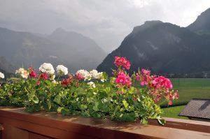 Austria: land of Schnitzels and Strudels