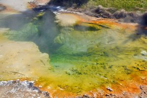 Colorful Yellowstone