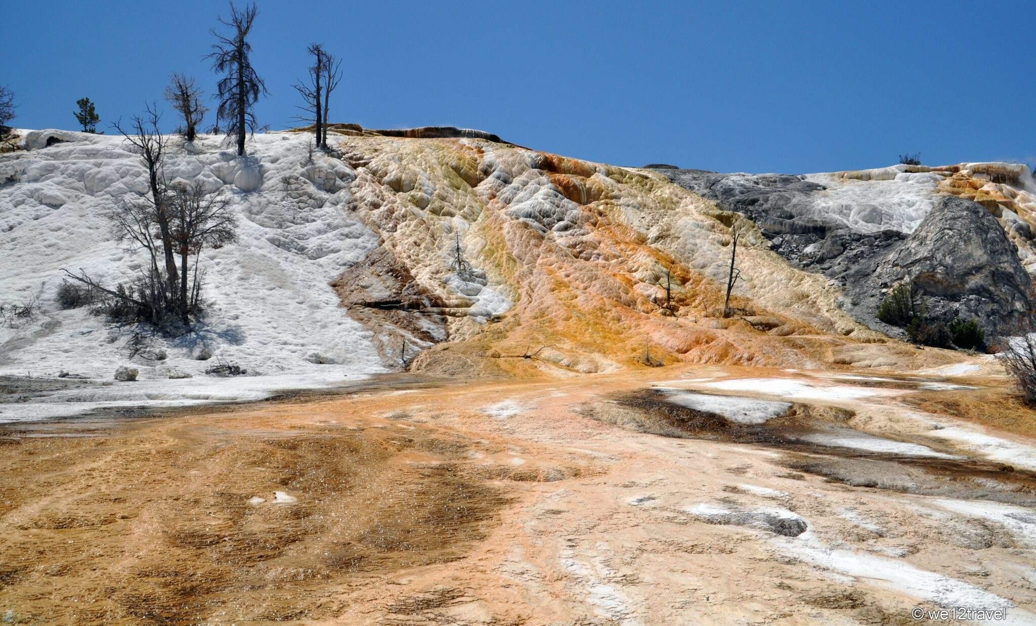 yellowstone 026