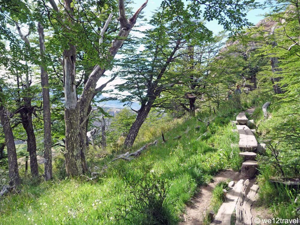 log-trail