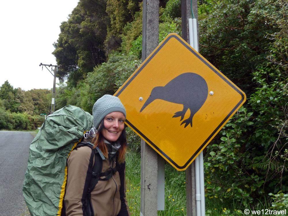 kiwi-sign