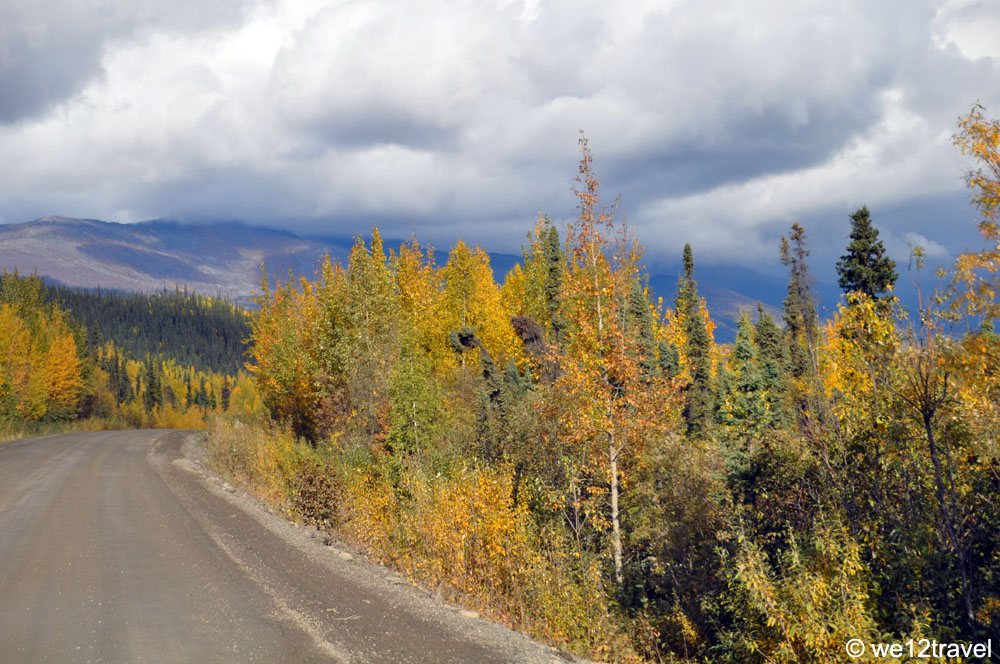 fall-foliage-dempster-highway-3
