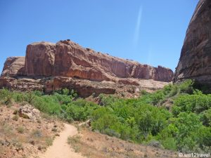 Negro Bill Canyon Trail: must-do wandeling in Moab