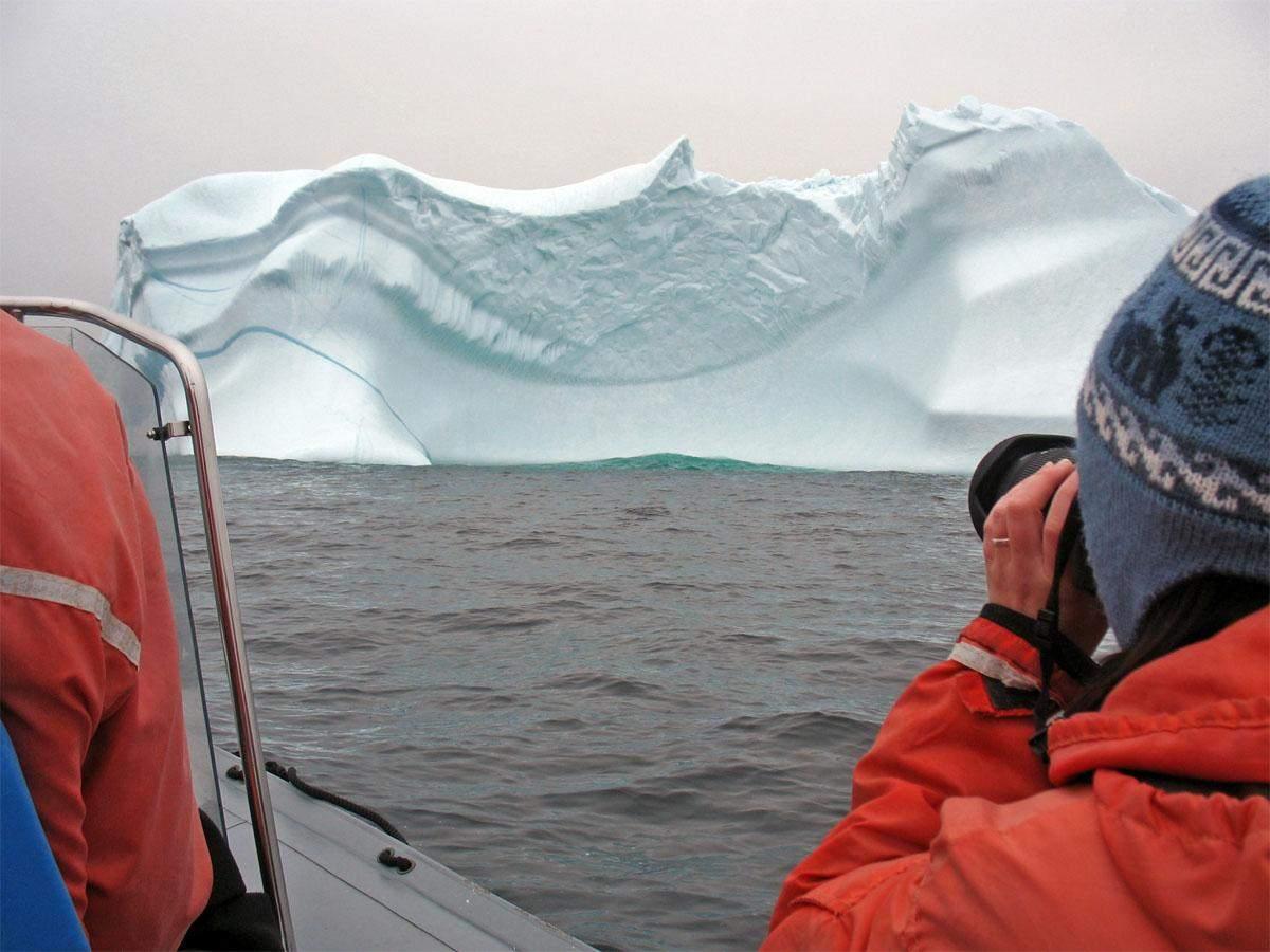 newfoundland-iceberg-cover