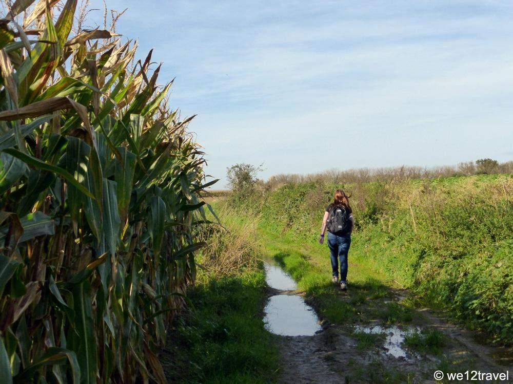 pajottenland-trail