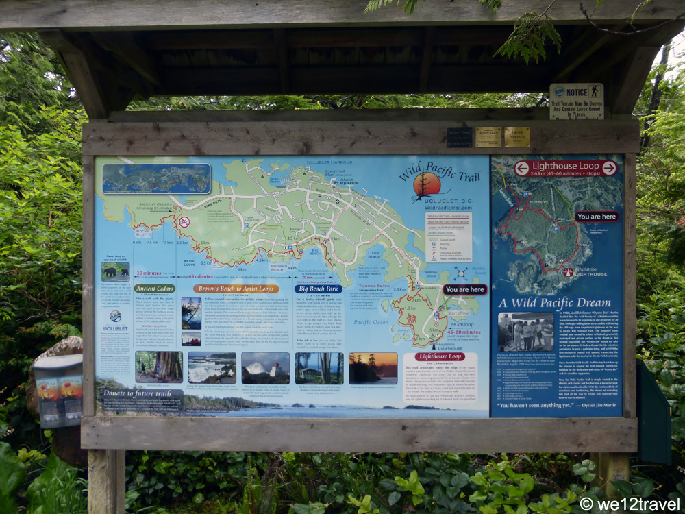 hiking the wild pacific trail
