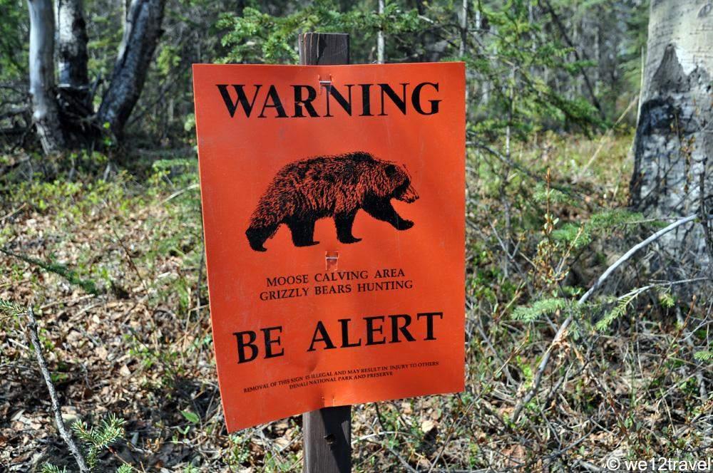 bear-warning