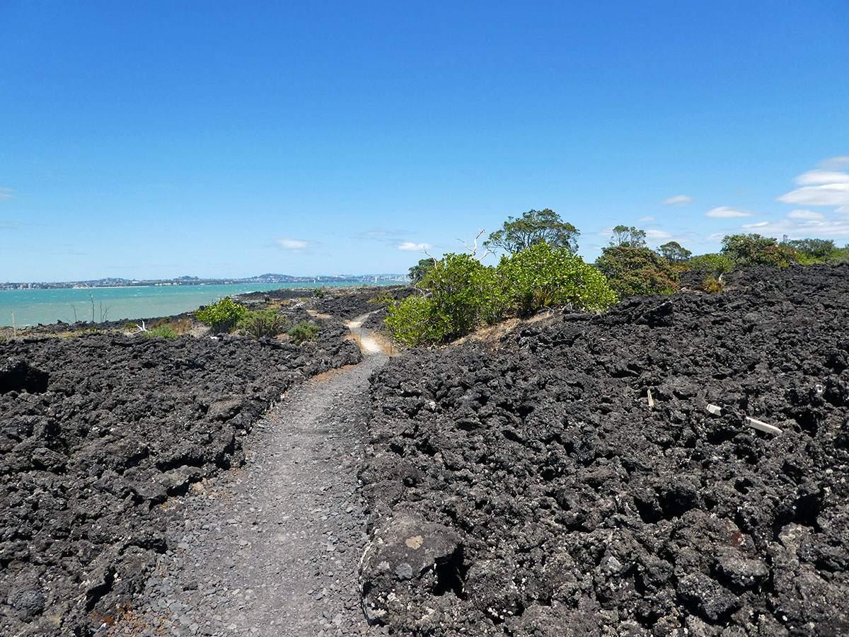 wandelen in nieuw zeeland rangitoto island