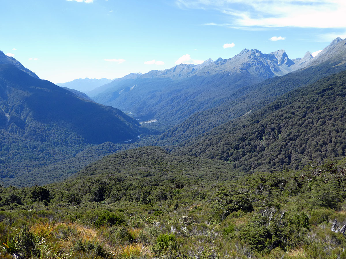 key summit hike the routeburn track best hikes in new zealand