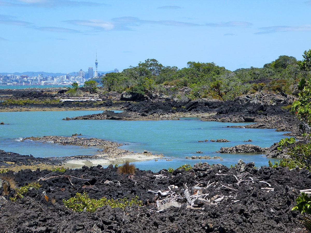 rangitoto island hike best hikes in new zealand