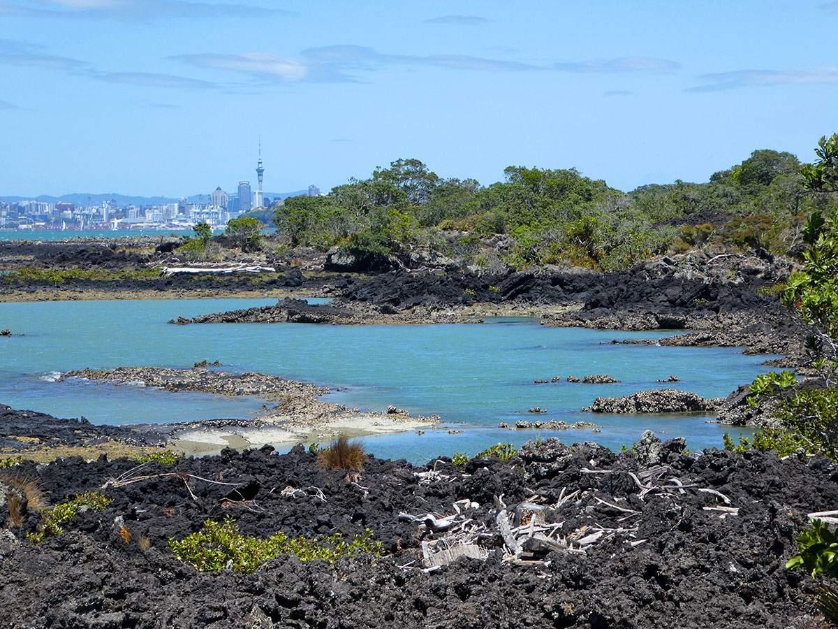 rangitoto island hike best hikes in new zealand
