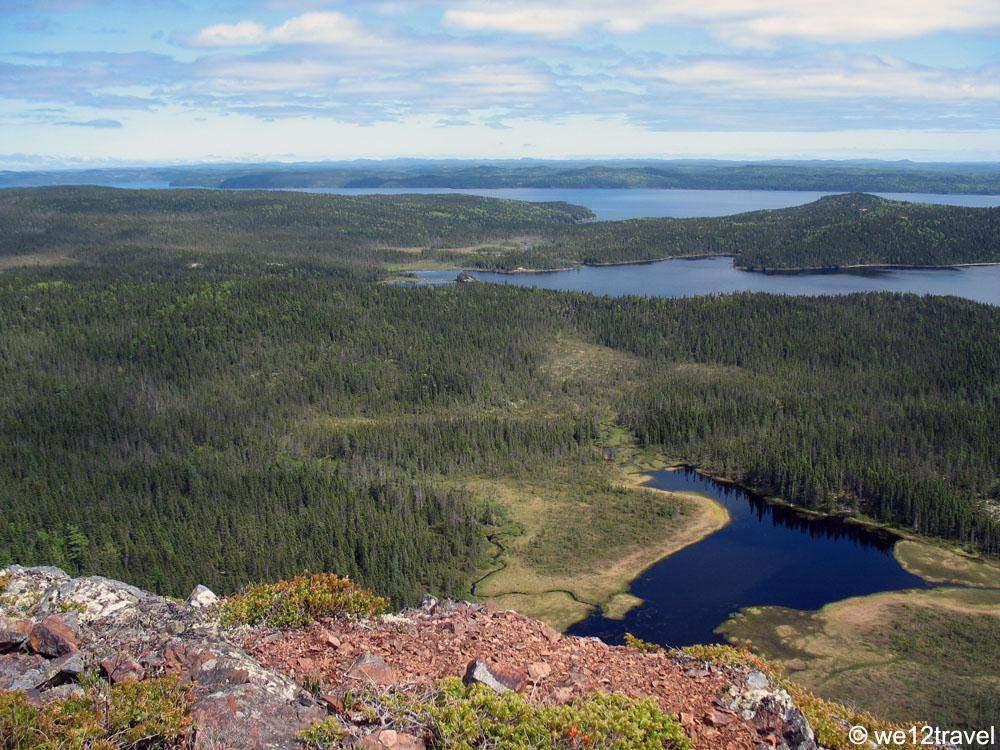 terra-nova-national-park
