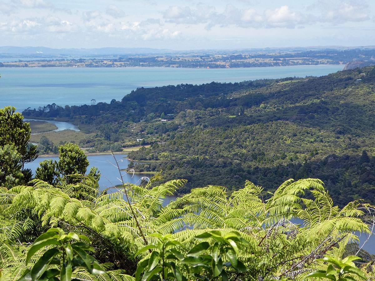 waitakere ranges rondreis nieuw-zeeland