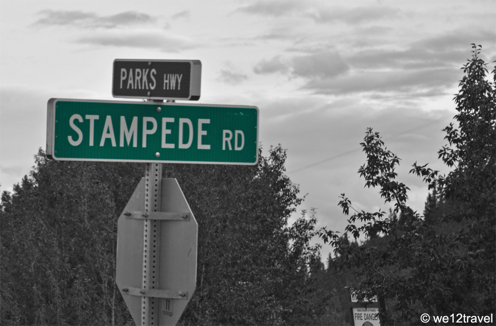 stampede-road-black-and-white