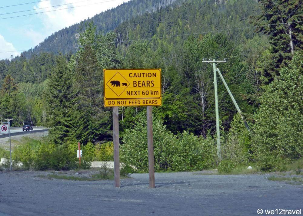 whistler-bear-warning