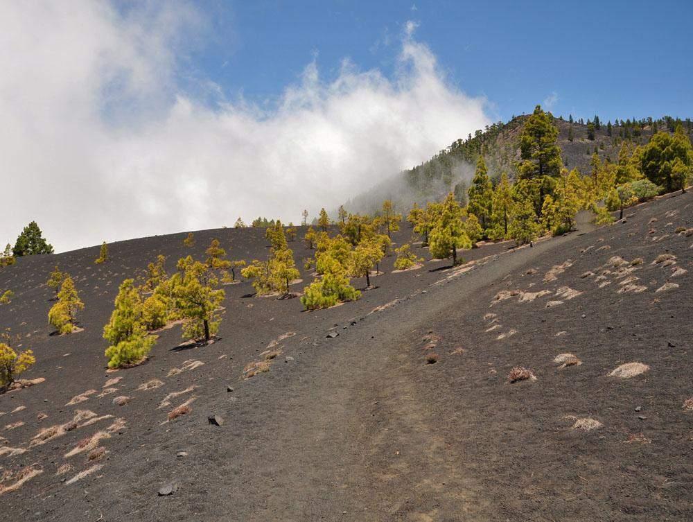 Ruta de los Volcanes La Palma hiking