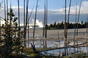 Zo maak je een reisplanning voor Yellowstone National Park