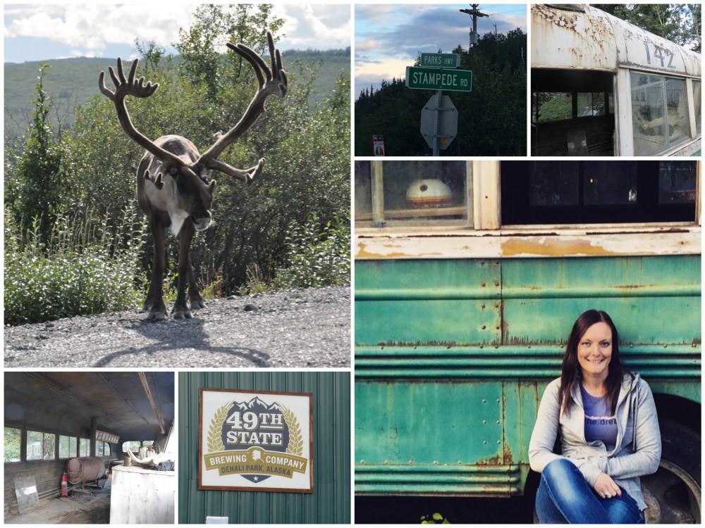magic bus into the wild alaska