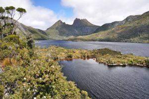 Tasmania in pictures – week 1