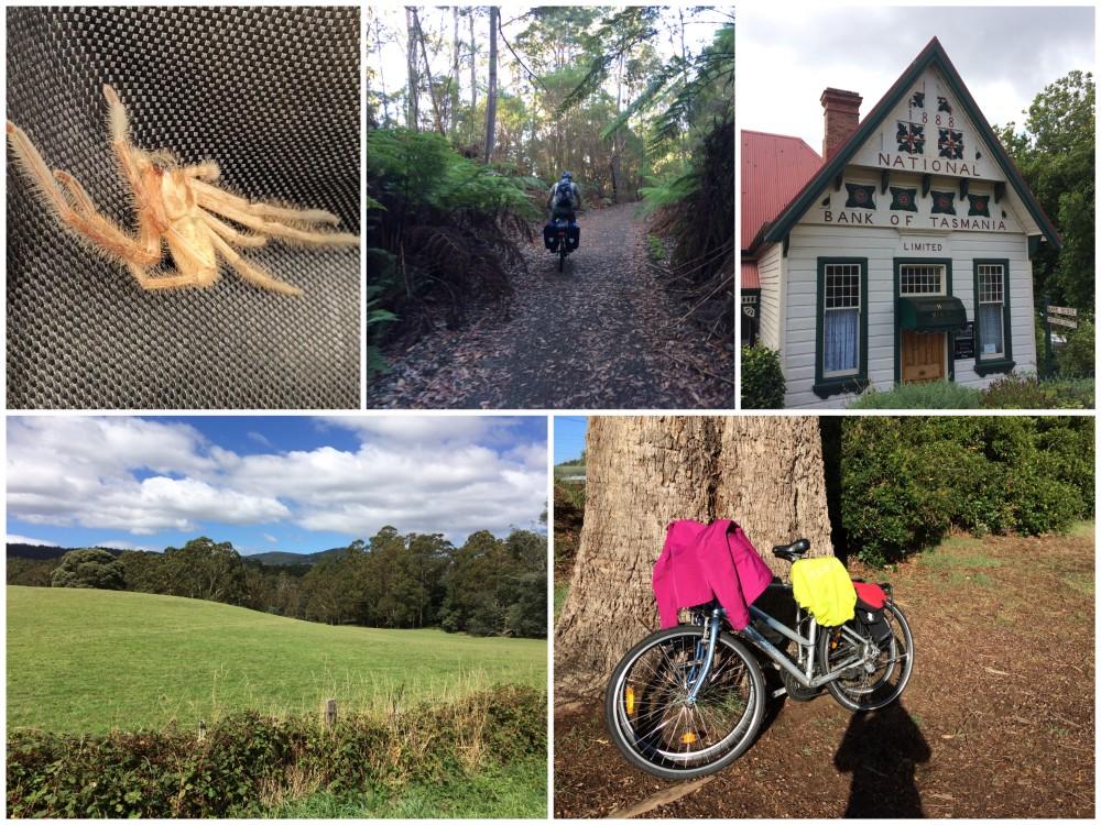 tasmania-week-2-firday