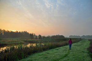 Een bezoek aan nationaal park De Alde Feanen
