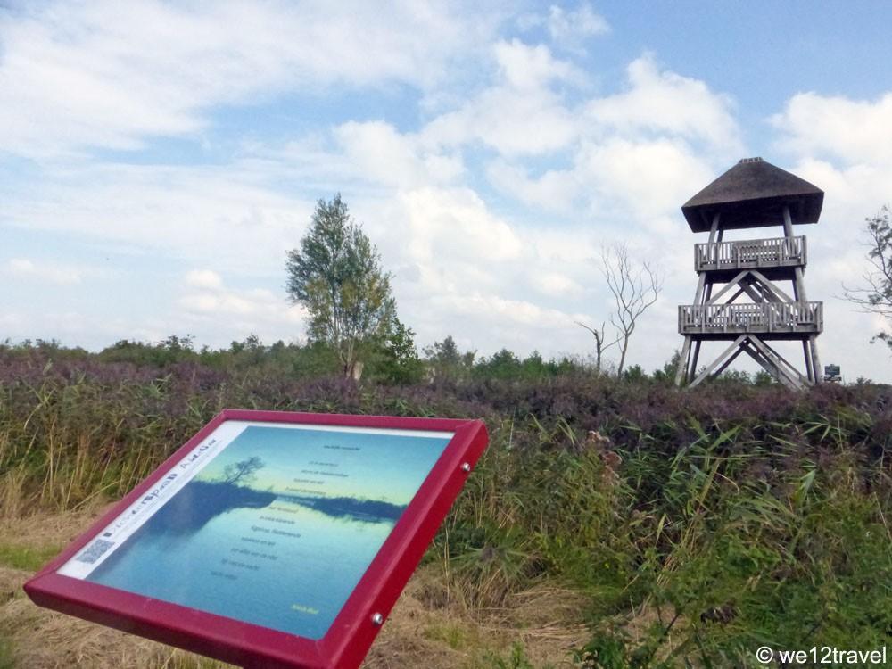 uitkijktoren-de-alde-feanen