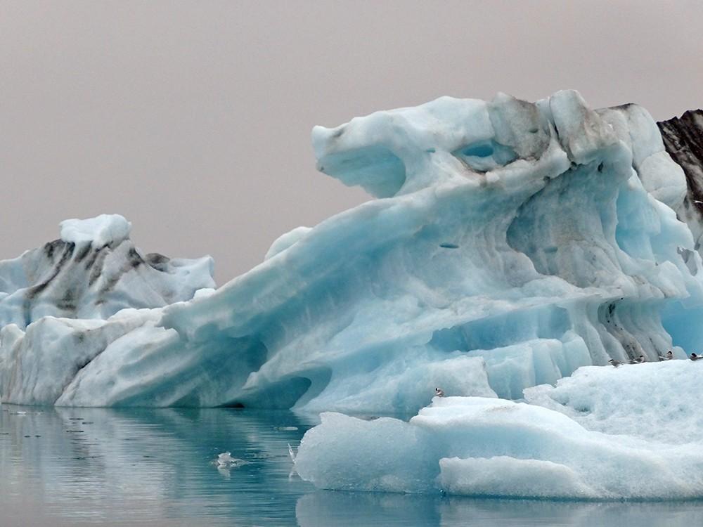 the icelandic south coast in one day jökulsárlón