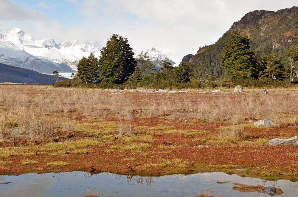 alberto de agostini national park chile patagonia