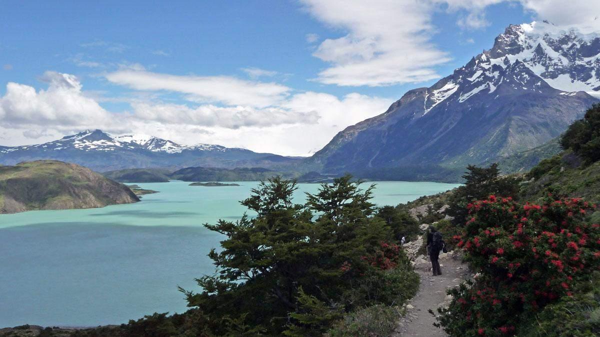w trek torres del paine lago nordenskjold los cuernos