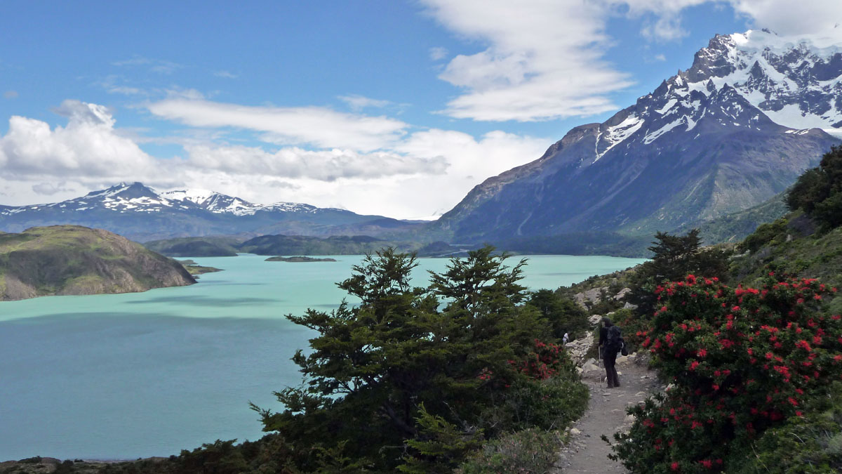 w trekking torres del paine in chili