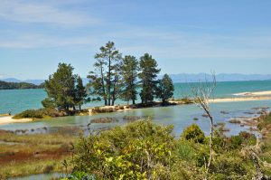 Hiking verslag: de Abel Tasman Coast Trek