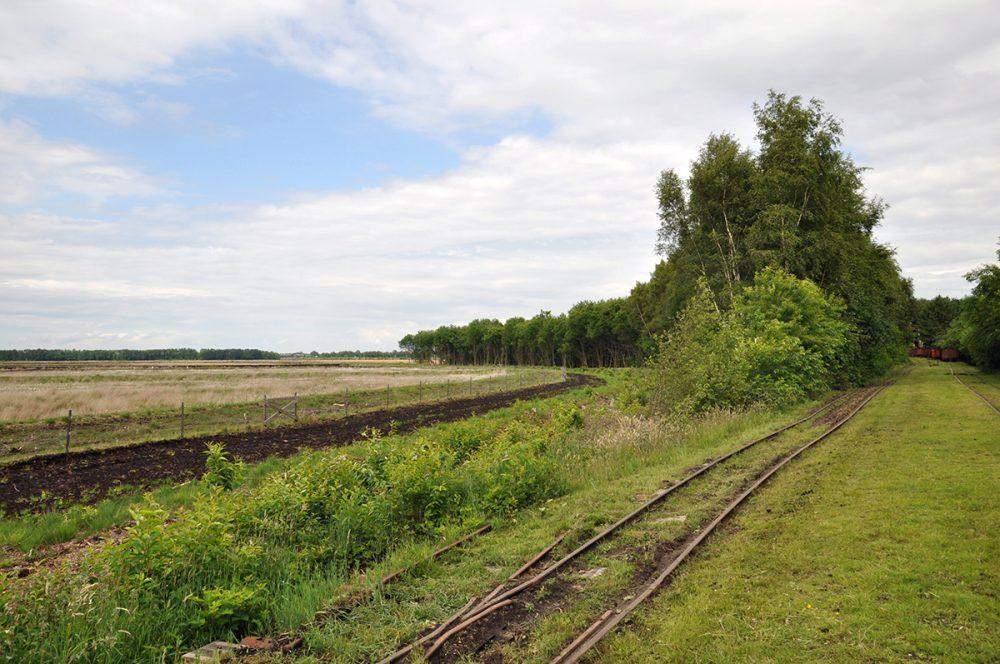Wietmarscher Moor Moor Museum Internationaal Natuurpark Veenland