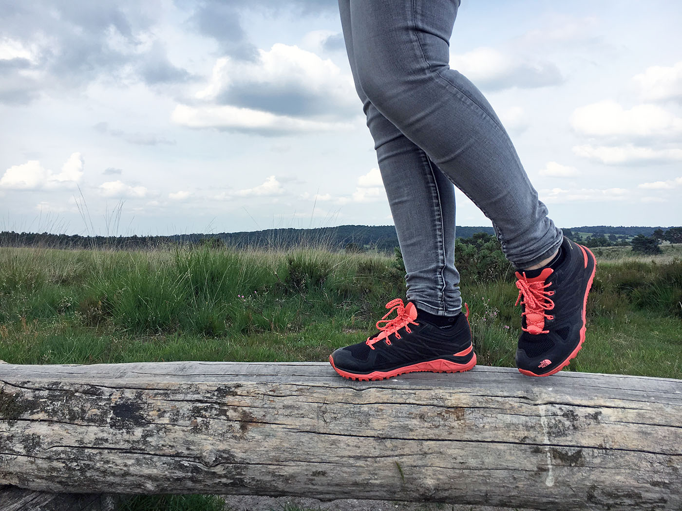 duża zniżka ujęcia stóp informacje dla North Face Ultra Fastpack II GTX hiking shoes review ...