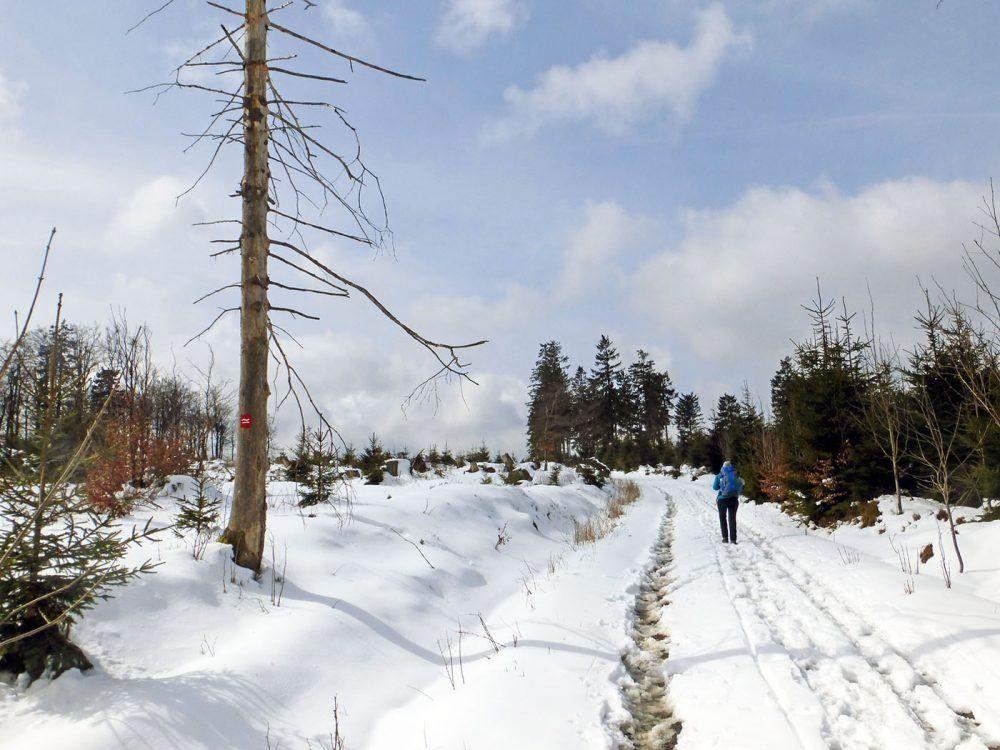 onbekende wandelgebieden in duitsland hiking in germany wandelen op de rothaarsteig hiking on the rothaarsteig