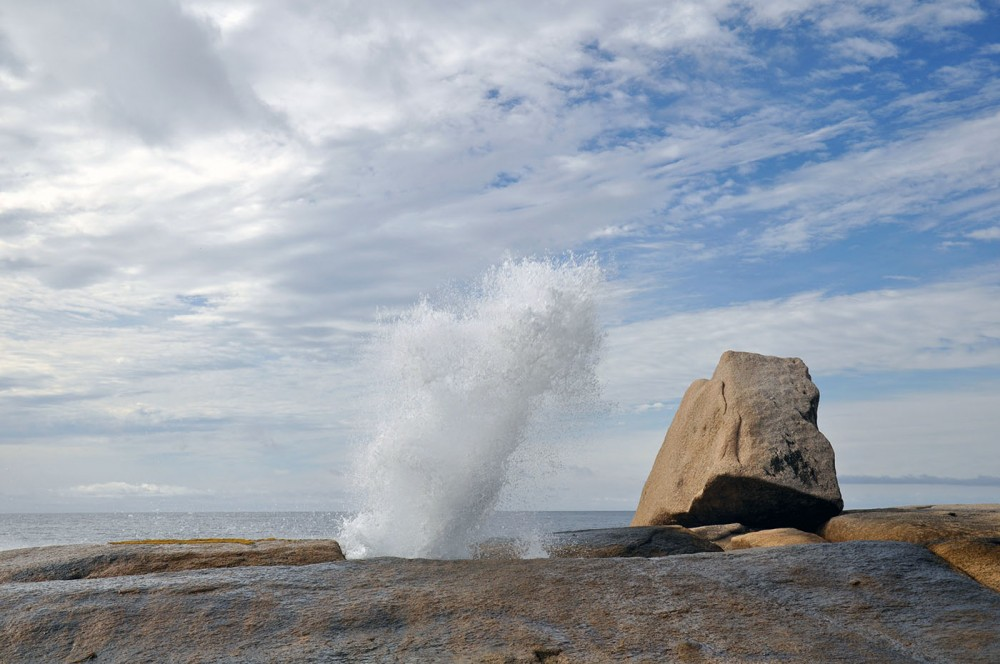 Things to do in Tasmania Bicheno Blowhole
