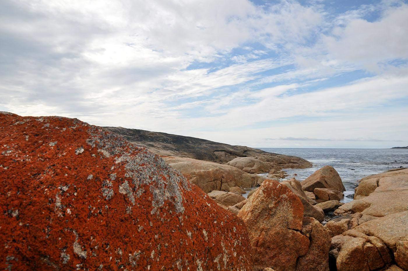 dingen om te doen in Tasmanië