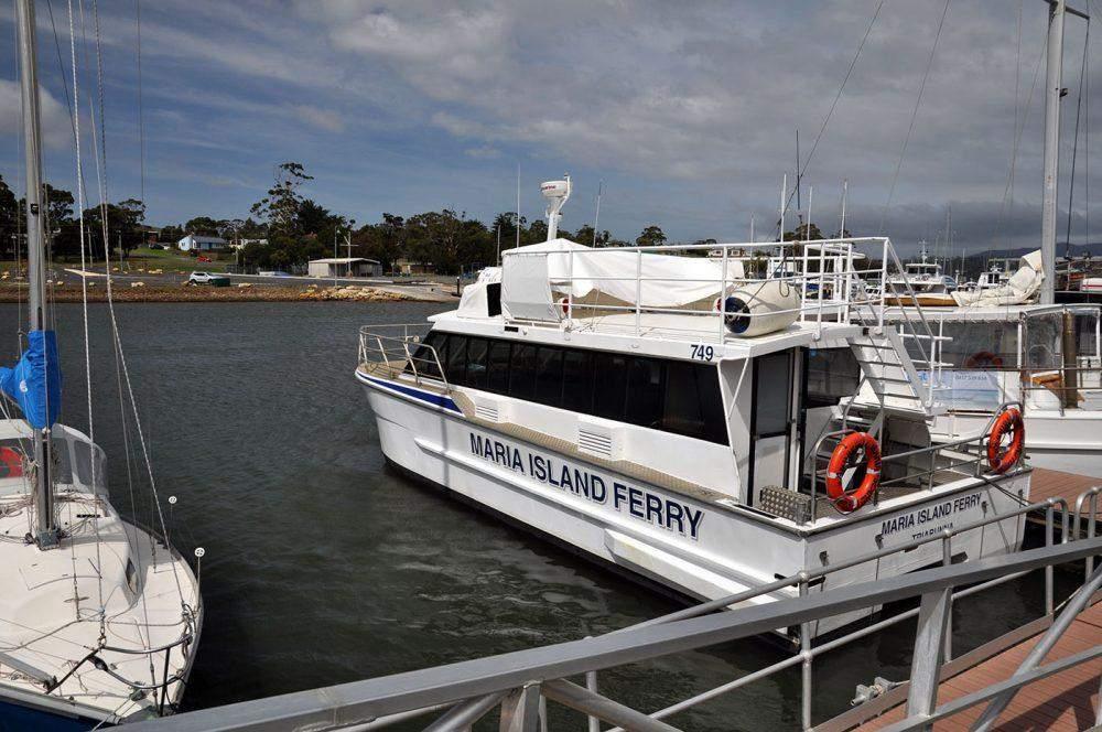 Things to do in Tasmania Maria Island