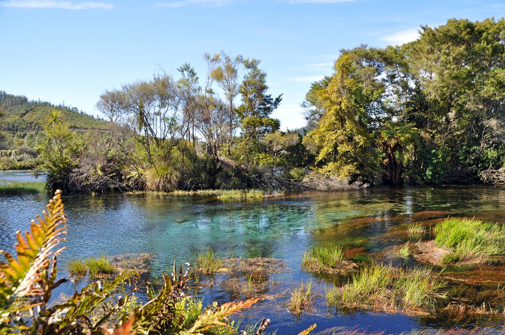 pupu springs new zealand unknown places in new zealand