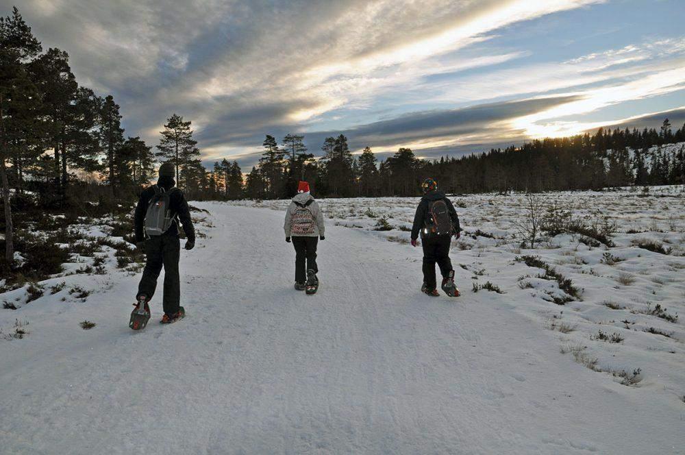 sneeuwschoenwandelen in varmland