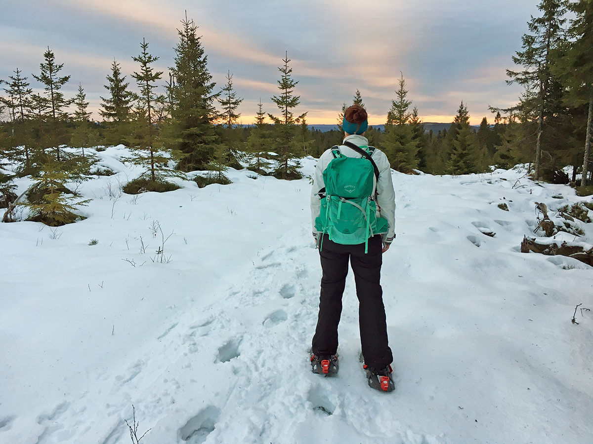 snowshoeing in sweden