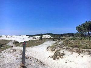 Wandelen in Schoorl: over de mooie Duintoppen Route