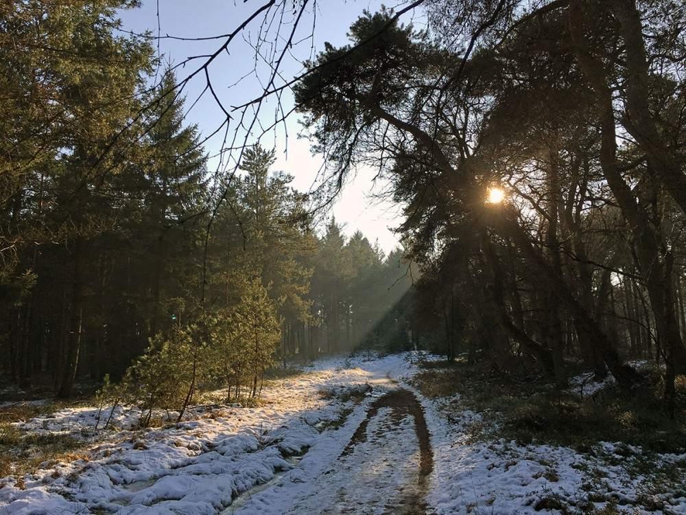 wandelen in salland