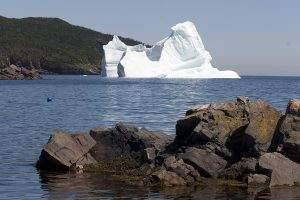 Op zoek naar ijsbergen in Newfoundland