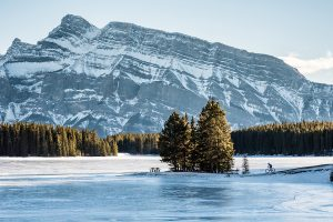 Winterse highlights in Alberta, Canada
