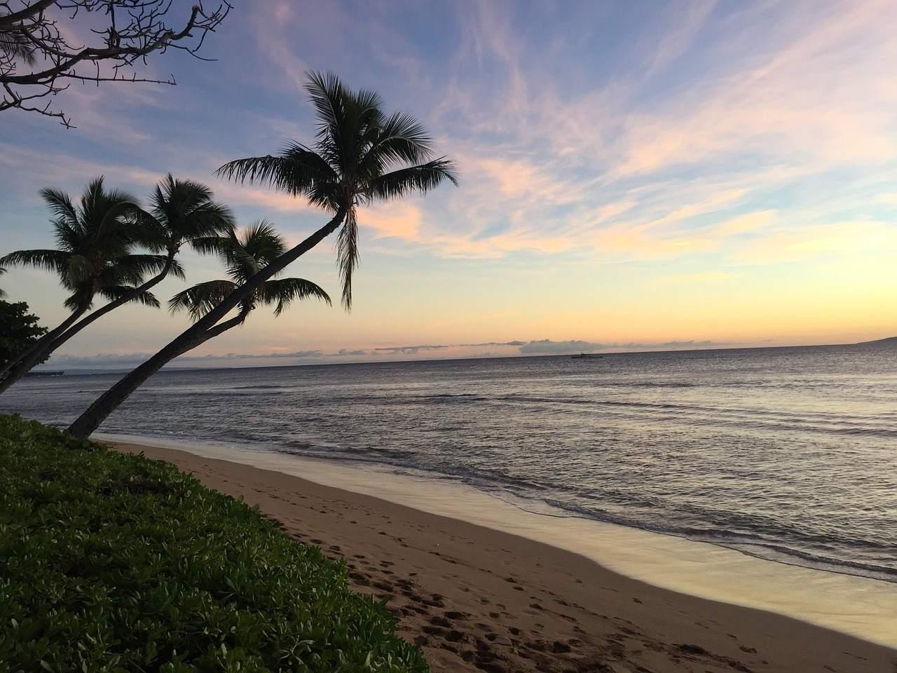 hawaii-2359012_1280