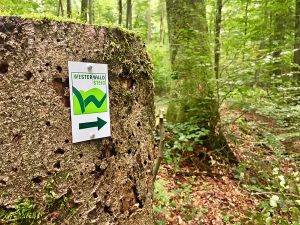 Wandelen op de Westerwaldsteig in Duitsland