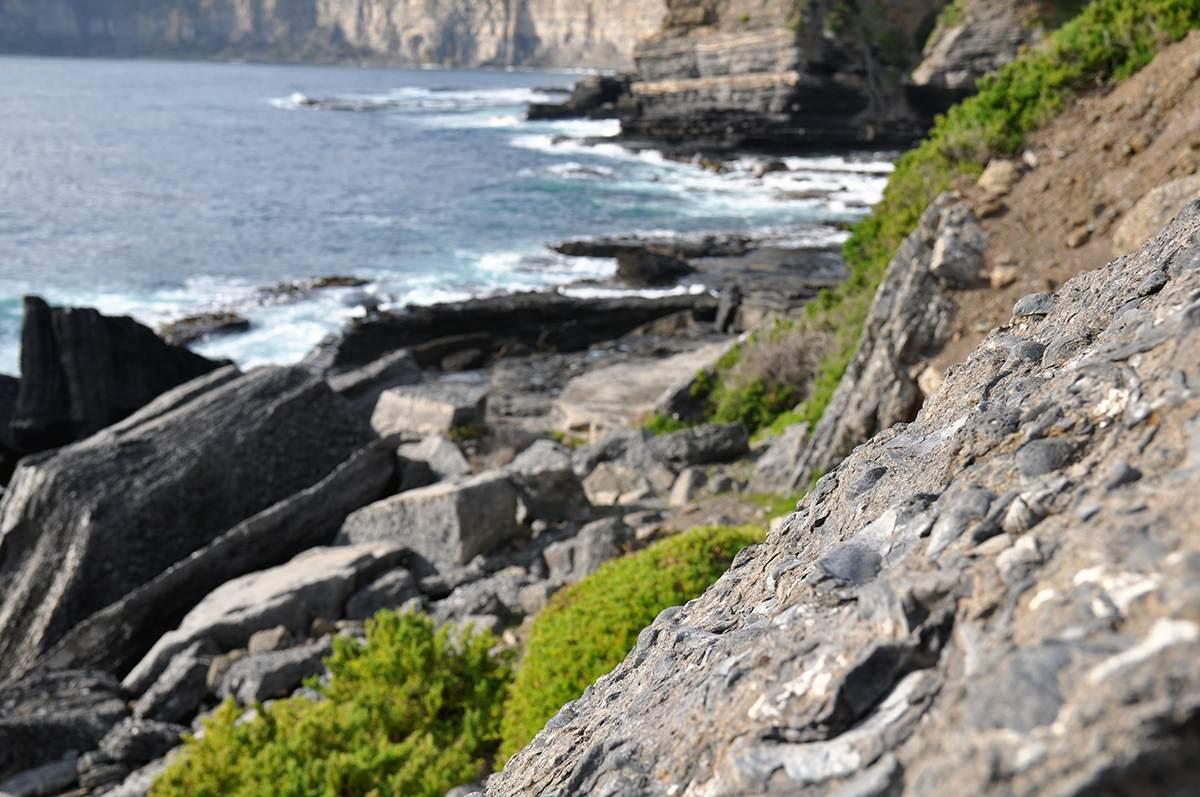 fossil cliffs tasmania