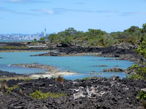 Hiking on Rangitoto Island in New Zealand